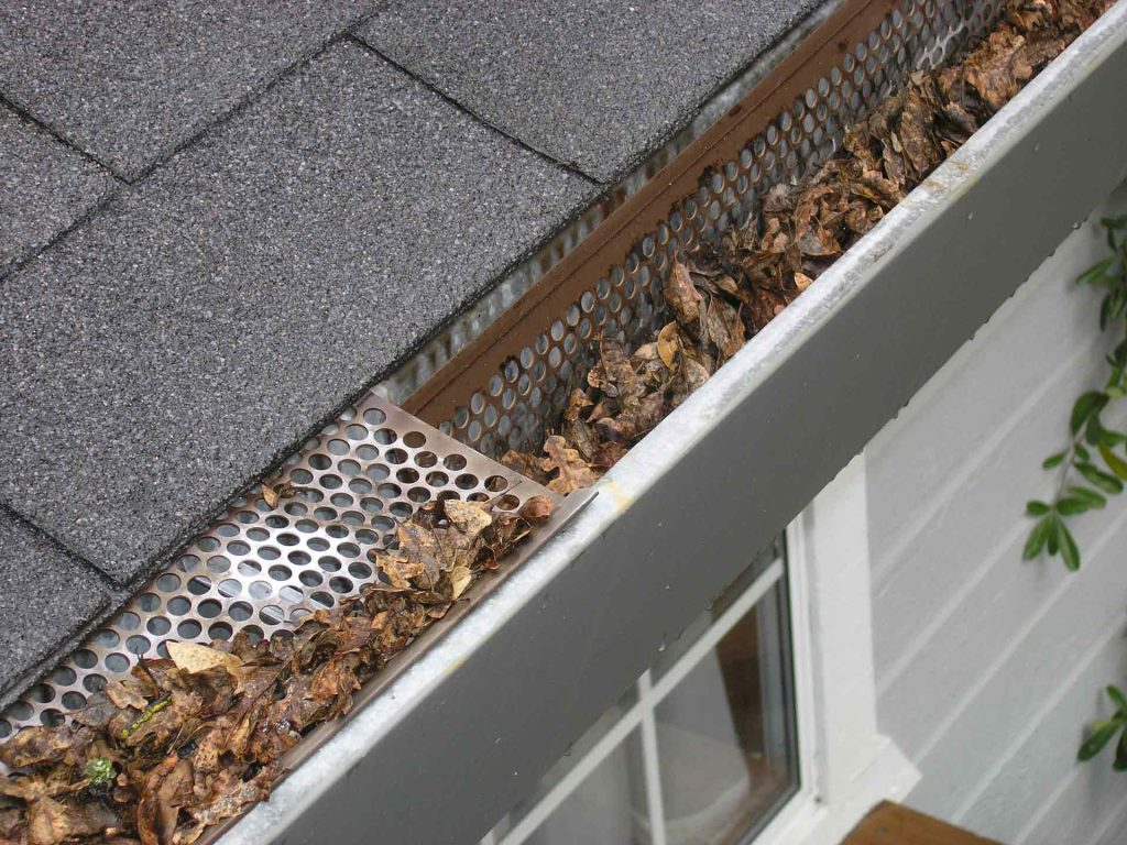 cleaning raleigh gutters